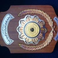 Awards:459